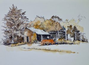 Old Shed near Waikuku by Quilliam Collister