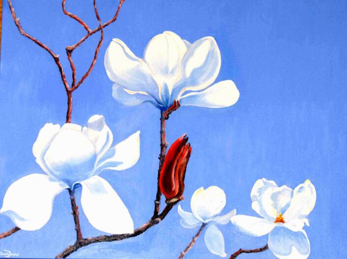 Magnolias by Sarah Deans