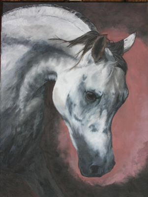 """Arab Stallion"" by Cynthia Muir"