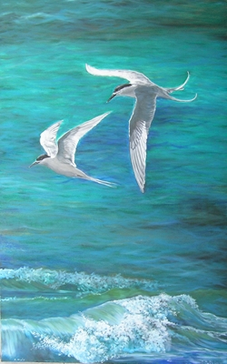 """Two Terns"" by Cynthia Muir"