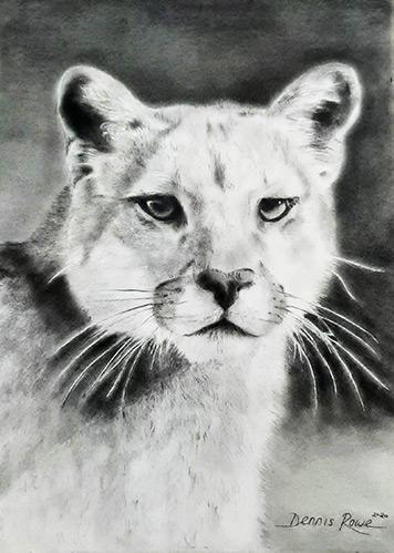 Drawing by Dennis Rowe