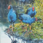 Three Pukeko by Lyn Leonard