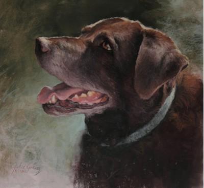 """""""Baldy's Dog"""" by Julie Greig"""