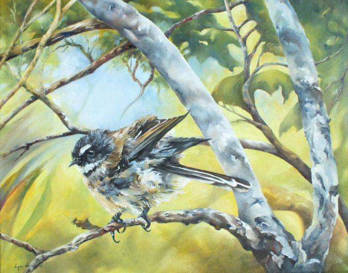 Fantail, oil painting by Lyn Leonard