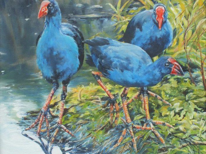 Three Pukeko, oil painting by Lyn Leonard