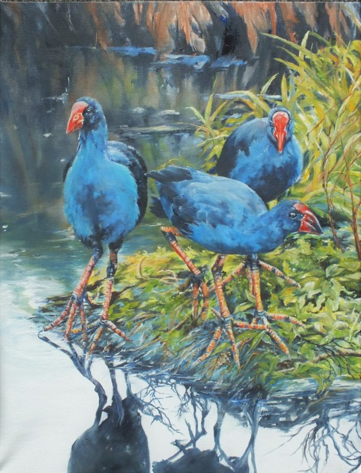 Three Pukeko, oil painting by Lyn Leonard