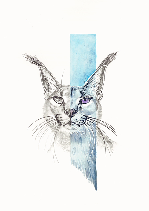 Duality 1 Caracal by Mandy Palmer