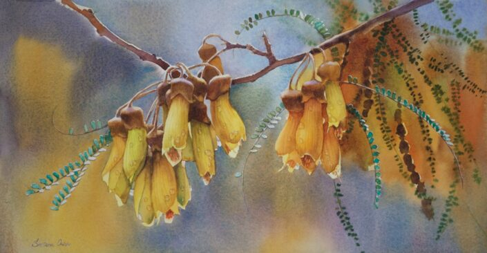 Kowhair Tree Blossoms by Svetlana Orinko