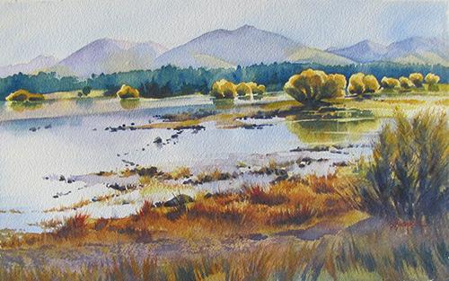 Tekapo Willows by Sue Simpson