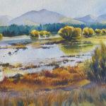 Takapo Willows by Sue Simpson