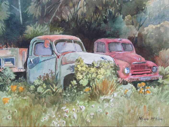 Two Old Bedfords by Ngaio McKee