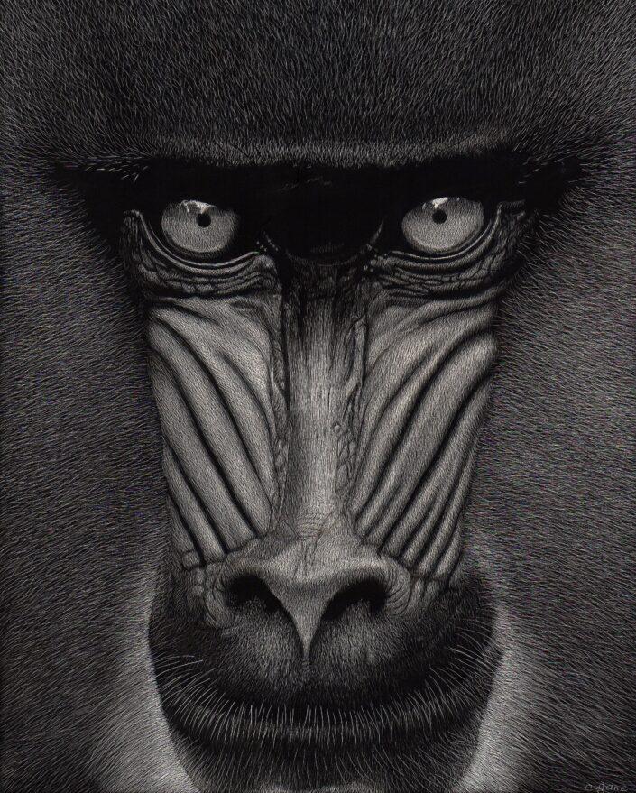 Artwork by Esther Gane