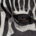 Eye on the Veldt by Esther Gane