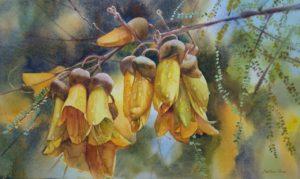 Kowhai Tree Blossoms by Svetlana Orinko