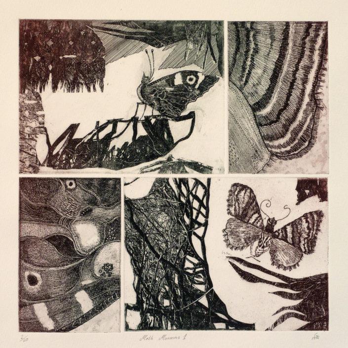 Moth Murmurs 1, an etching by Gaby Reade