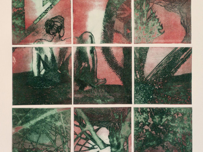 Warm Shadows 1, an etching by Gaby Reade