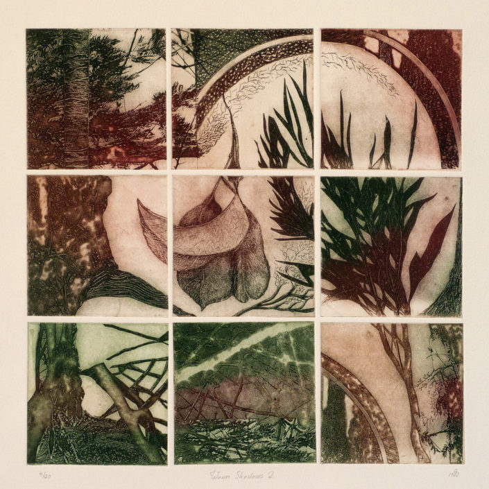 Warm Shadows, 2 an etching by Gaby Reade