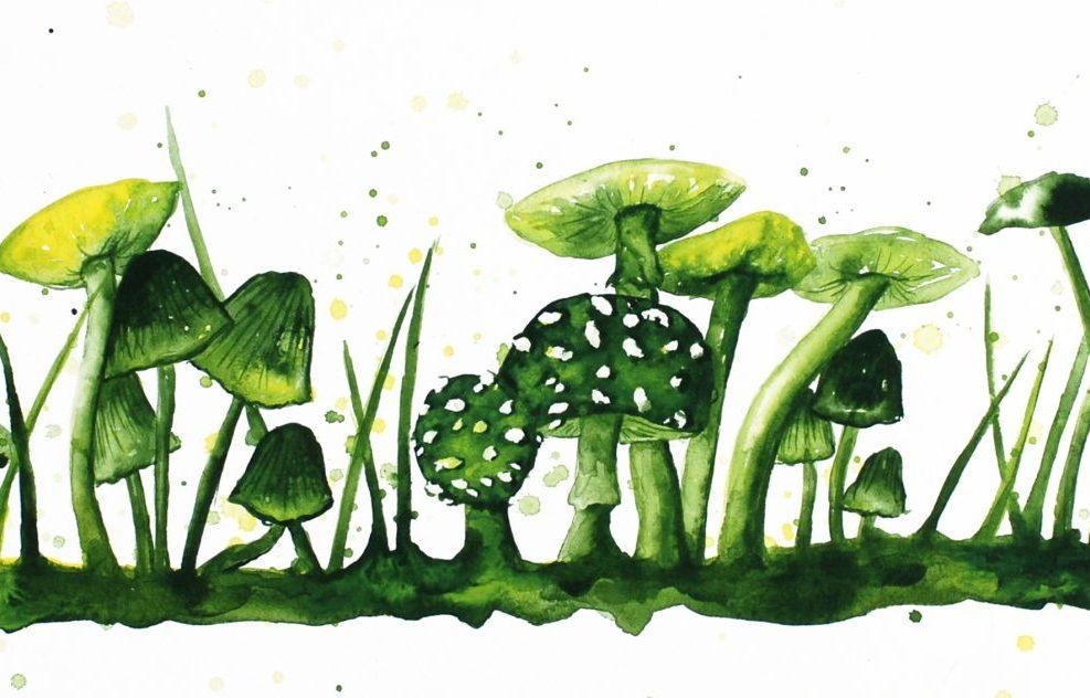 Mushrooms 3 by Nikki Parker