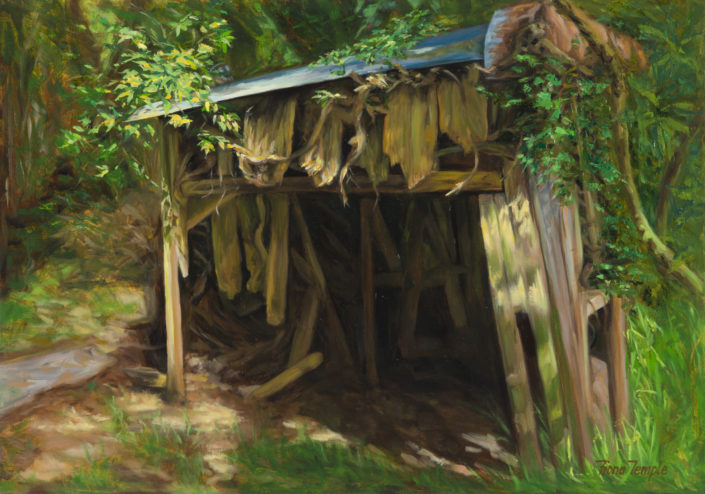 No.1 Shed by Fiona Temple