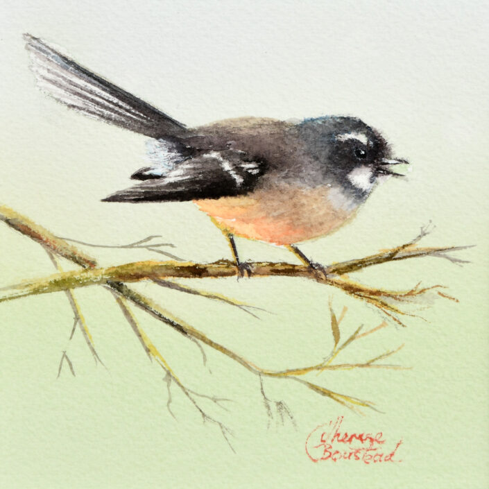 Fantail by Therese Boustead