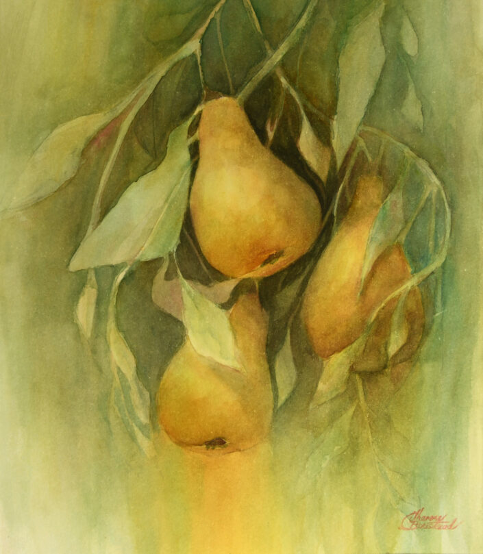Golden Pears by Therese Boustead