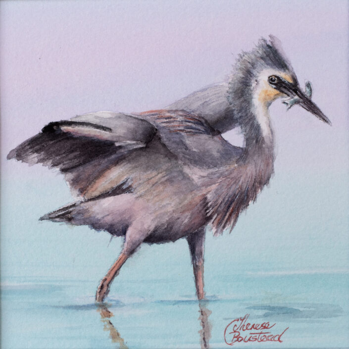 Heron by Therese Boustead