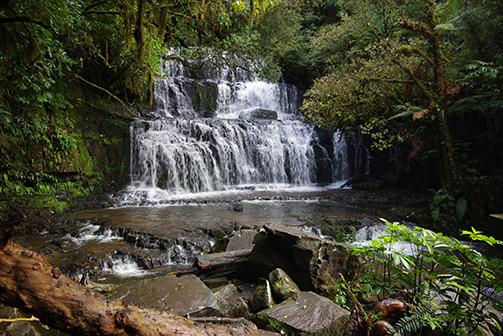 Purakaunui Falls by Ian Gardiner