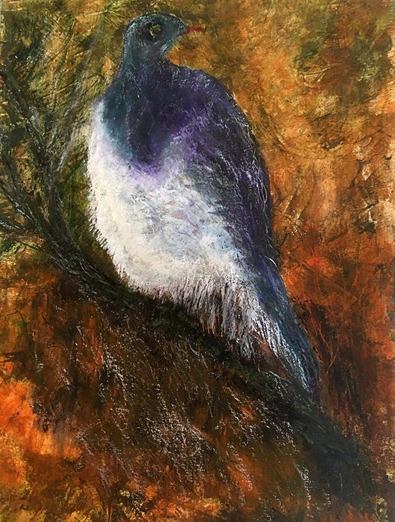 Wood Pigeon, painting by Maria Sinclair