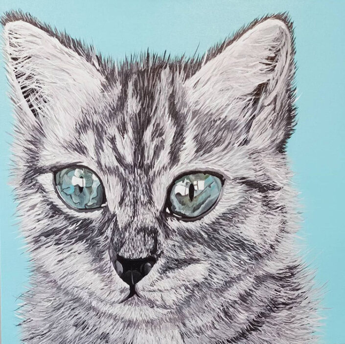 Brenda the Cat by Sally Hart