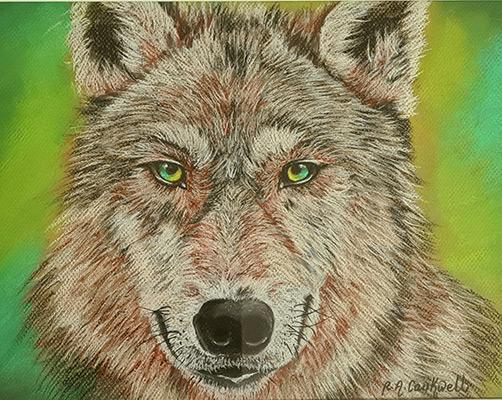 Green Eyes by Ruth Anne Caukwell